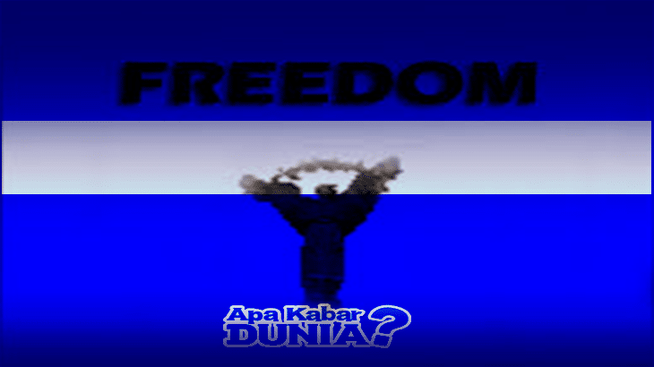 Download Freedom Mod Apk Versi Terbaru 2020